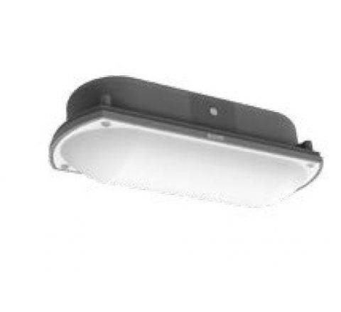 Polycab Gardenia 10 W LED Bulkhead(Cool Day Light)