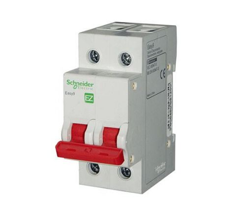 Schneider Easy9 Two Pole Isolator